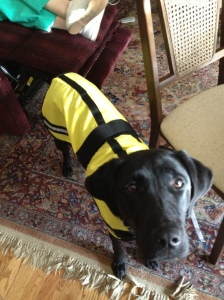 This is a picture of her rain jacket that came in the mail while we were there. Isn't it adorable? I've been told she looks like a bumblebee!