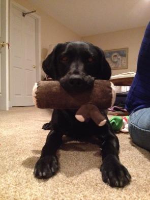 "Makiko holding a ""yule log"" toy."